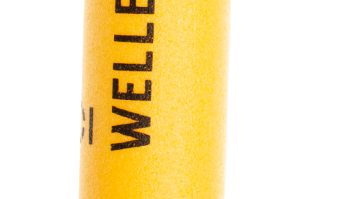 CO-1001-PONEY-WHISTLE