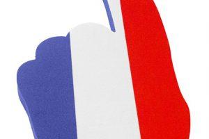 em2020-FS-4210 gant-main nr.1 France